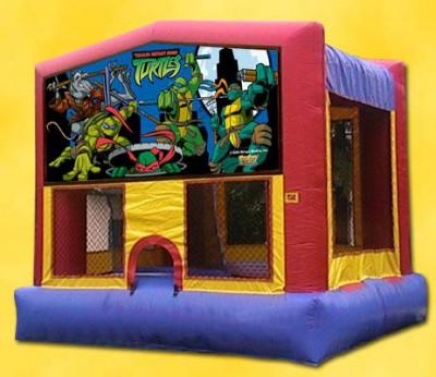 Teenage Mutant Ninja Turtles Bouncer