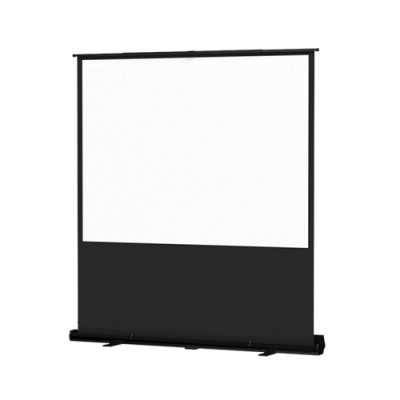 Da-Lite Portable Projection Screen